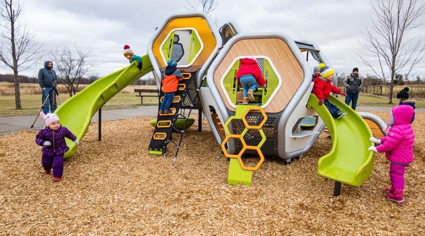 Landscape Structures Hedra Scout Play Structure